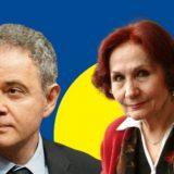Lutovac članovima GO u Beogradu: Želite li da budete DS ili ukras u Vučićevom parlamentu 7