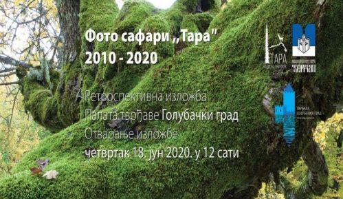 Lepote Nacionalnog parka Tara na izložbi fotografija u palati Tvrđave Golubački grad 2