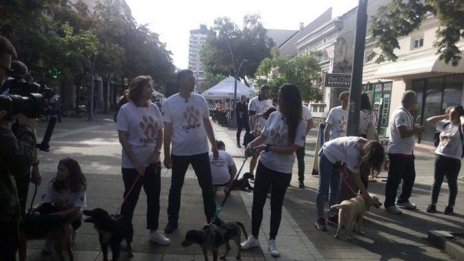 Veća briga o napuštenim psima u Šapcu 2