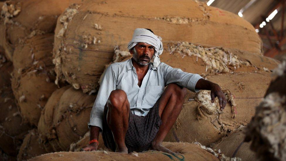 Sakupljač pamuka u Indiji