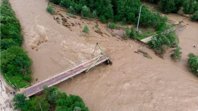 Poplave u Ukrajini: Zašto su odgovorne klimatske promene, ali i nelegalna seča drveća 3