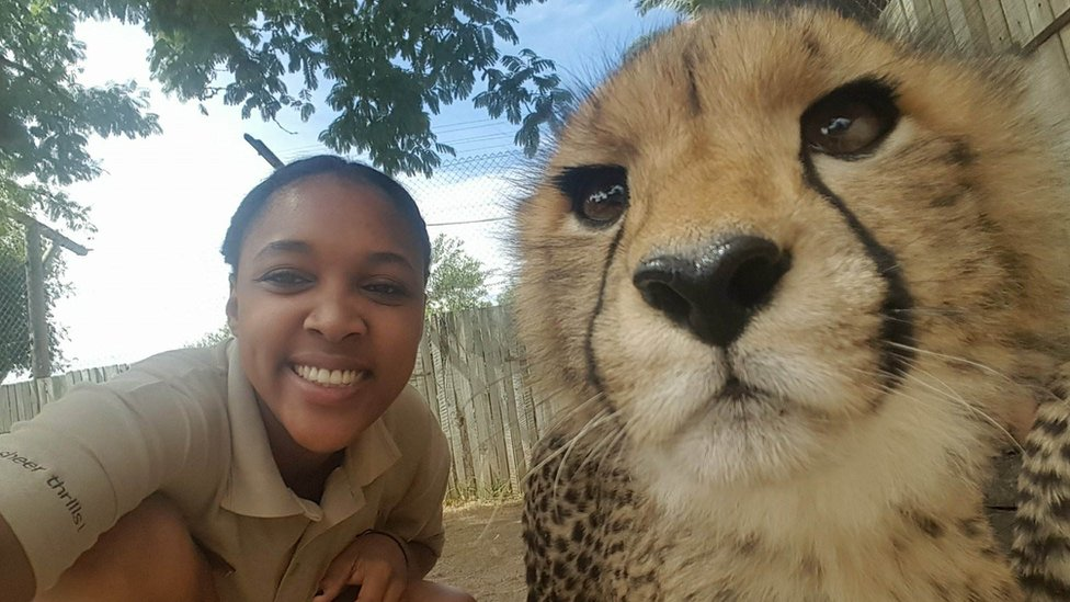 Animal keeper Angelique Oktober with a cheetah