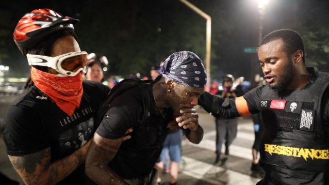 """""""Robokapi"""" među demonstrantima 2"""