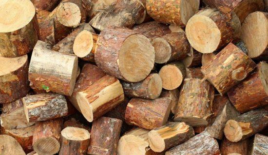 U Nišu sezona nabavke ogrevnog drveta u punom jeku, cene za sada miruju 13
