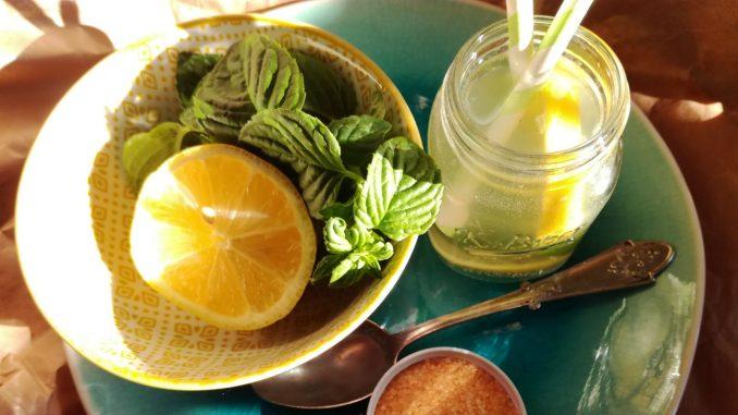 Limunana (recept) 1