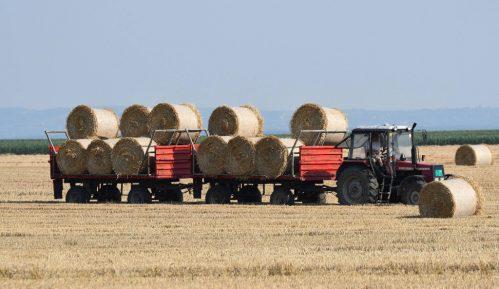Država je izgubila mogućnost da kreira bilanse hrane 2