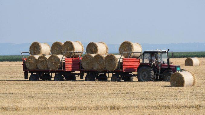 Država je izgubila mogućnost da kreira bilanse hrane 1