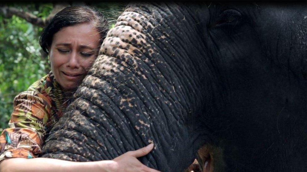 Sangita Iyer hugging the trunk of an elephant
