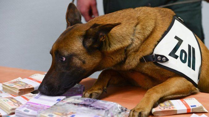 Pas tragač nanjušio 250.000 evra na aerodromu u Frankfurtu 2
