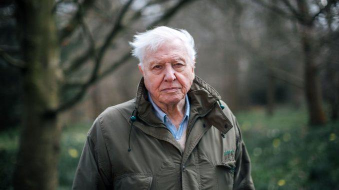 Ser Dejvid Atenboro: Imao sam sreće da sretnem mnoge vrste životinja, ali će neke od njih nestati 2
