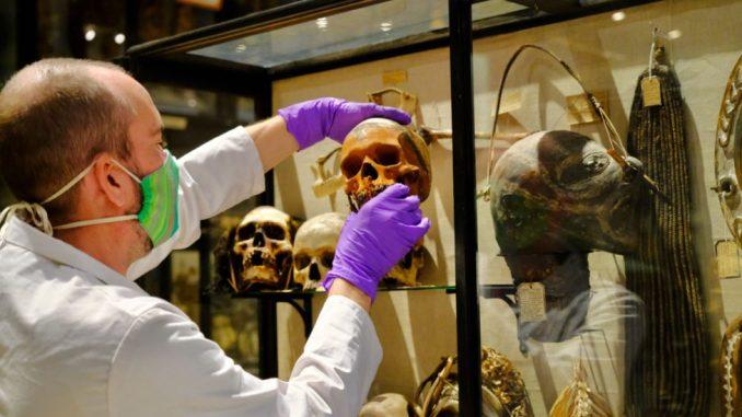 Smrt i arheologija: Oksfordski muzej uklonio morbidnu postavku ljudskih glava 3