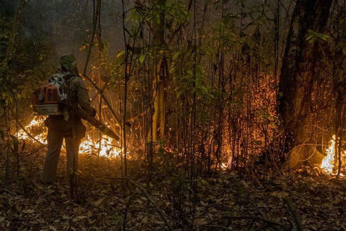 U fotografijama: Šumski požari opustošili najveću svetsku močvaru 1