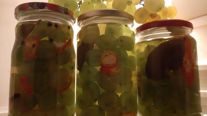 Recept za grožđanu turšiju 4