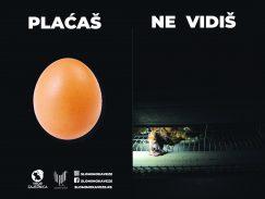 Koliko košta jedno jaje? 3