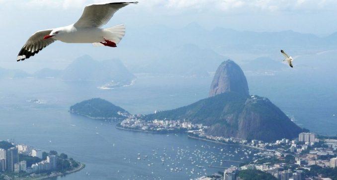 Rio de Žaneiro otkazao karneval zbog korona virusa 3