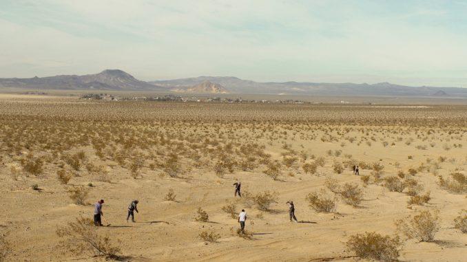 Film o nedovršenom pustinjskom gradu - mestu transformacije i ponovnog rođenja 1