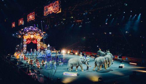Francuska zabranjuje divlje životinje u cirkusima, marinskim parkovima 5