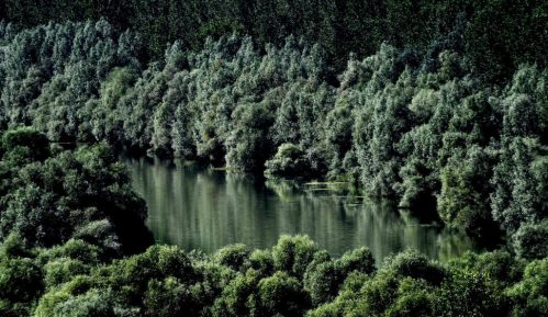 Deca u Portugaliji tužila 33 države zbog zagađenja 15