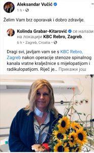 Vučić poželeo brz oporavak bivšoj hrvatskoj predsednici 2