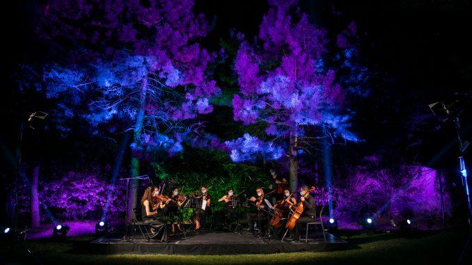 Koncert Muzikona u Botaničkoj bašti 6
