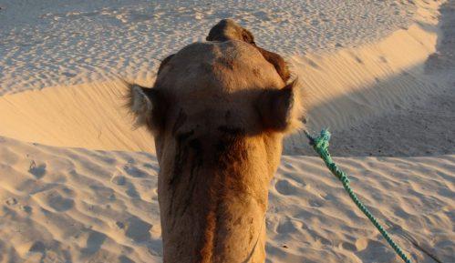 Toplotni talasi - opasnost koja se u Africi ne registruje 1
