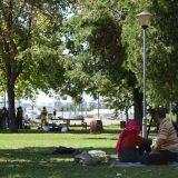 Kovačević: U Srbiji se ne kažnjavaju akti mržnje protiv migranata 5