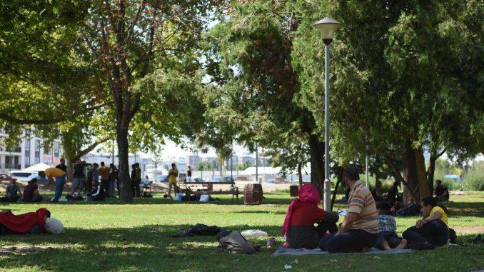 Država ćuti na širenje mržnje prema migrantima 2