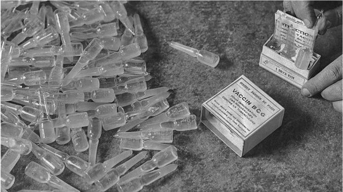 Korona virus, nauka, BCG : Može li vakcina iz 1921. godine da spasi živote od Kovida-19 4