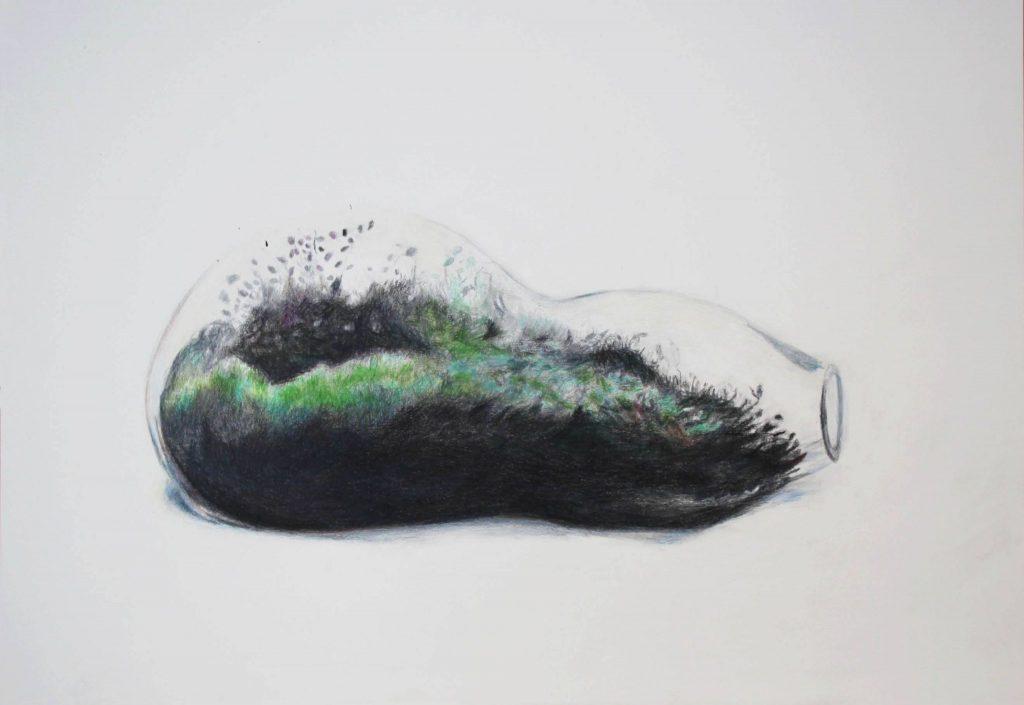 Bonsai pejzaži u galeriji SULUJ 2