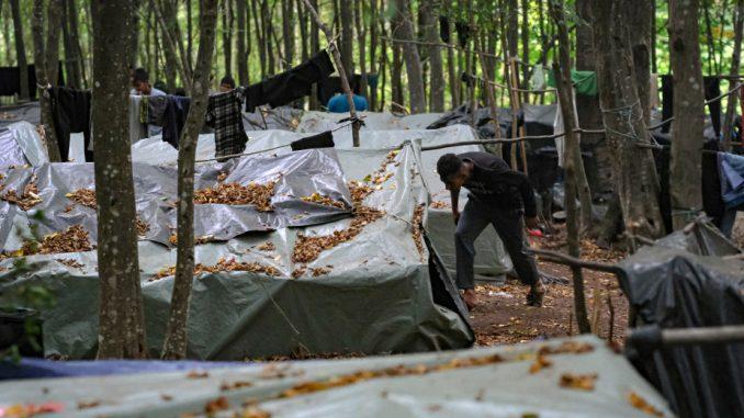 U sukobu migranata kod Bihaća, dvoje mrtvih i 18 povređenih 2