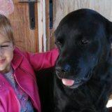 Devojčica Saša iz Kraljeva i njen pas Oskar - dva borca koja ne odustaju 5