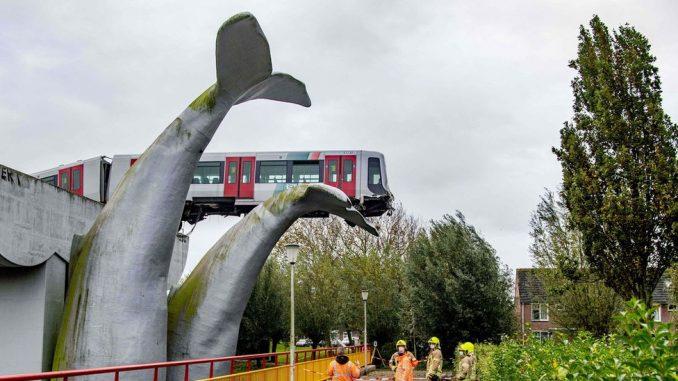 """Saobraćaj, holandija i nezgoda: Kako je kit """"upecao"""" brzi voz i sprečio katastrofu 4"""