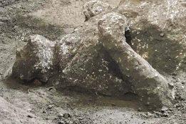 Nova otkrića u Pompeji: Nađeni ostaci dva muškarca, verovatno bogataša i roba (FOTO) 4