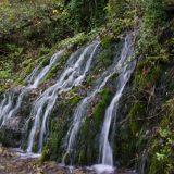 Srbija na putu ka prvom dobru Svetske prirodne baštine 12