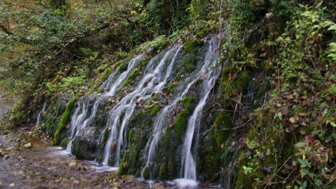 Srbija na putu ka prvom dobru Svetske prirodne baštine 2