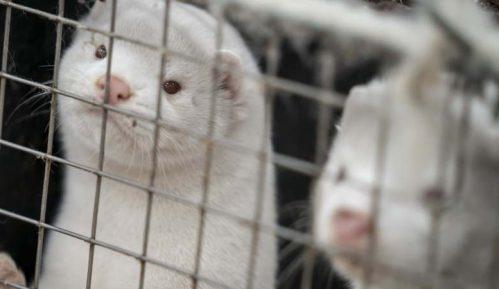 Protest farmera Danske zbog likvidacije vizona 5