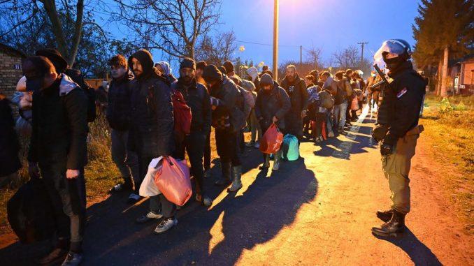 Vulin: Akcijom MUP-a oko 450 migranata vraćeno u kampove i prihvatne centre (FOTO) 1