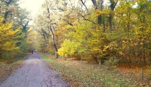 Građani sprečili seču stabala u šumi kod gradskog groblja u Čačku 13