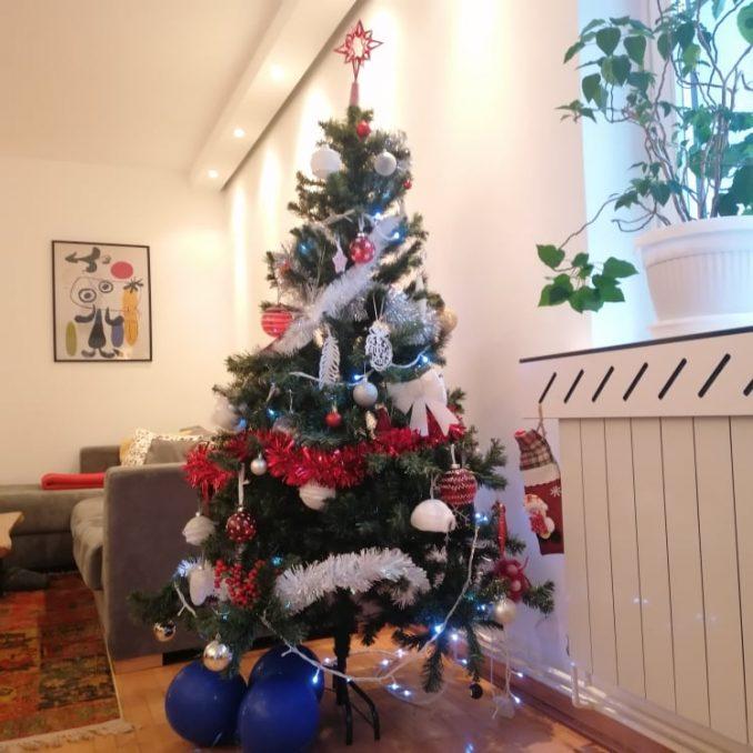 Jelka za Novu godinu: Da li više čuvamo prirodu ako kupimo plastično ili prirodno praznično drvo 4