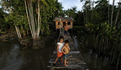 Amazonska prašuma za 18 godina izgubila površinu jedne Španije 5