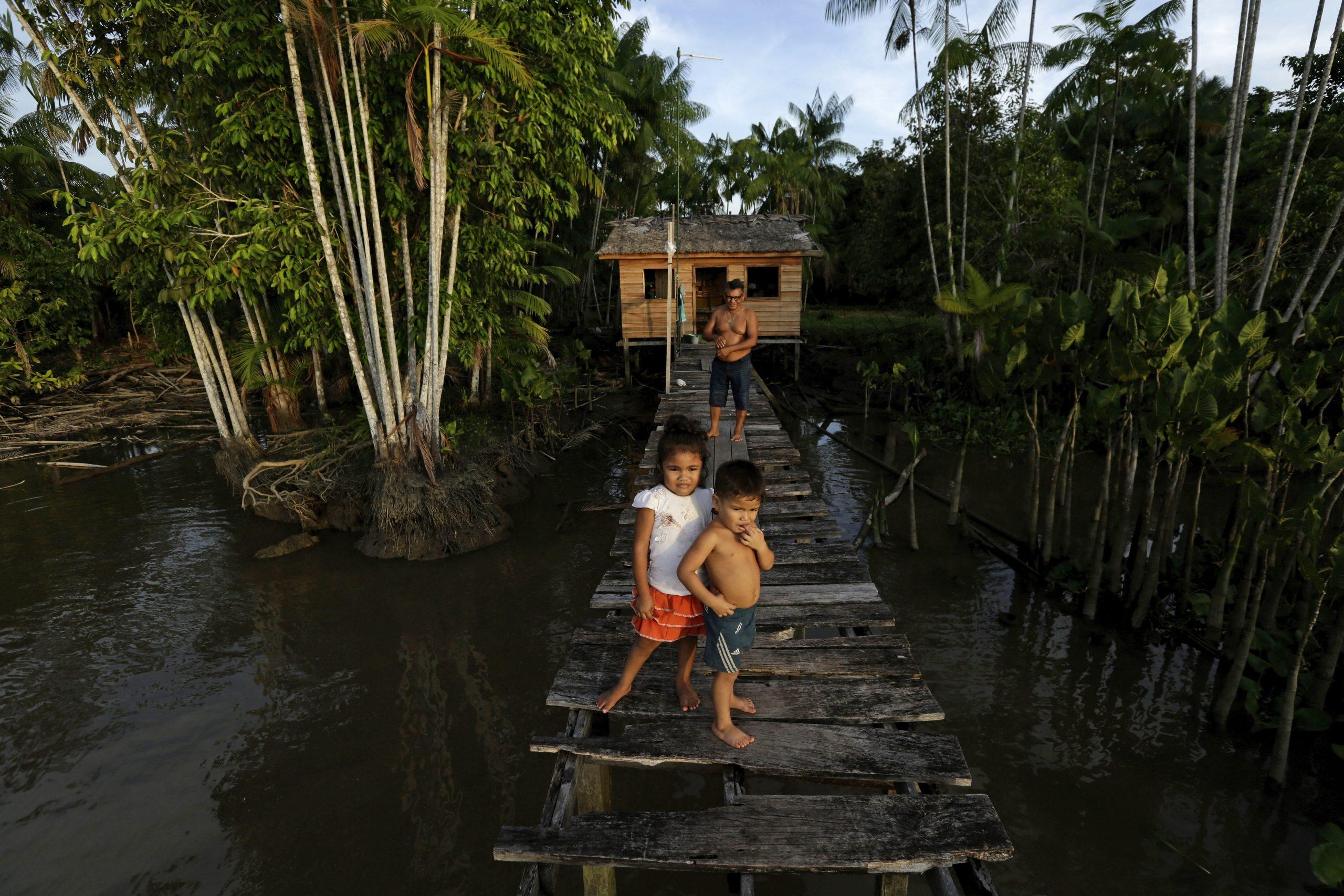 Amazonska prašuma za 18 godina izgubila površinu jedne Španije 1