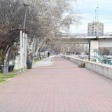 Postavljena gnezda za mrešćenje smuđa na Dunavu kod Novog Sada 6