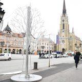 Novi Sad: Grad na kredit kupuje autobuse na električni pogon 12