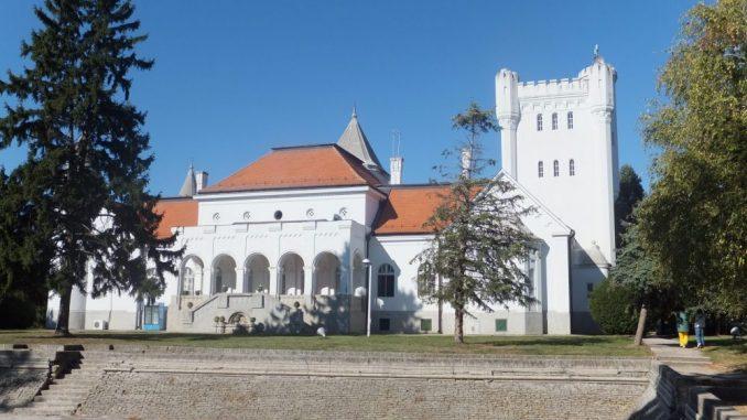 Dvorci Vojvodine: Neki postali škole i muzeji, druge uništava vreme 3