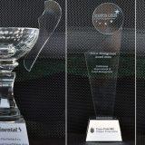 Kompanija Stanton Chase dodelila nagrade za razvoj talenata 8