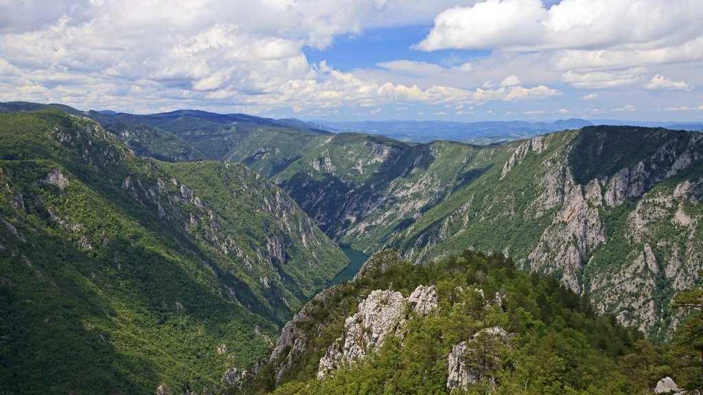 Na Svetski dan planina stručnjaci ukazuju na značaj biodiverziteta 1