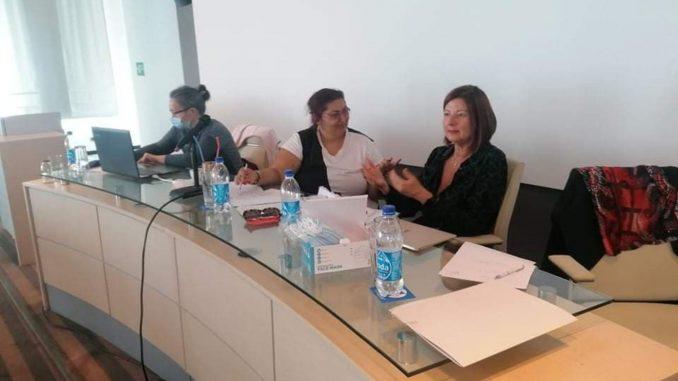 Multietnička feministička mreža: Žene manjina na selu trostruko diskriminisane 2
