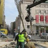 Zelenilo: Zamena stabala na Trgu Republike u Beogradu 2