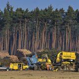 Nemački sud potvrdio da proizvođač automobila Tesla mora da obustavi seču drveća 5