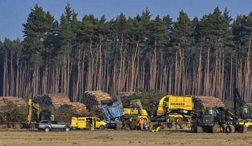 Nemački sud potvrdio da proizvođač automobila Tesla mora da obustavi seču drveća 4